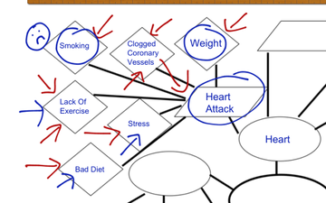 Circulatory System Concept Map Educreations